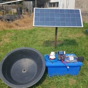 solar watering system